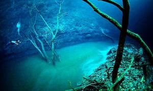 The Black Sea enigmas