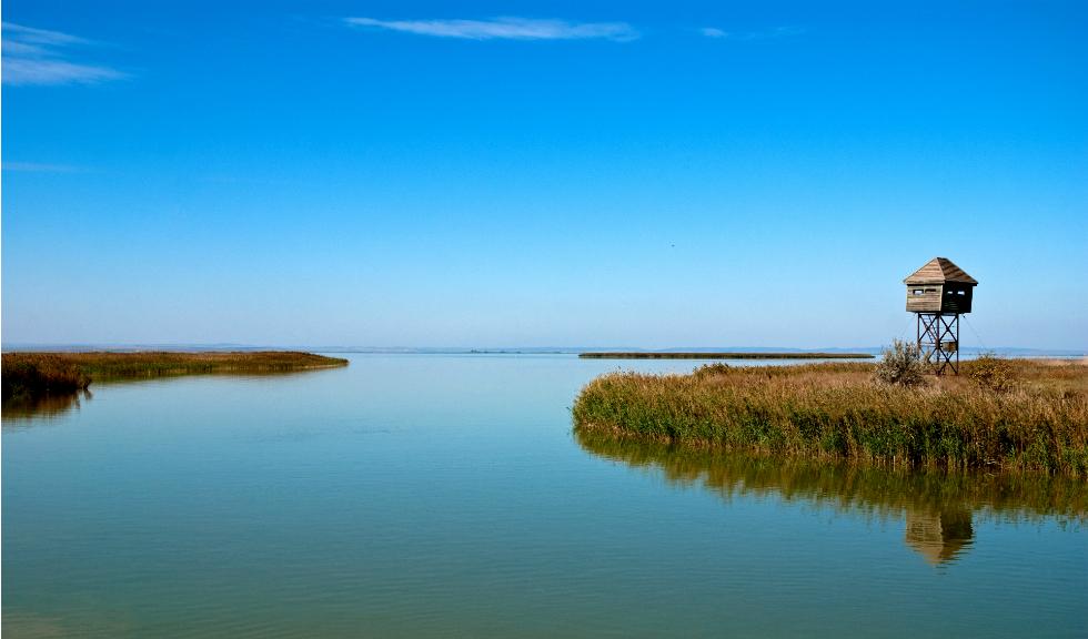 Ce puteti vedea in Delta Dunarii?