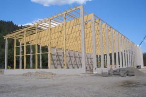 Care este structura de rezistenta potrivita pentru o constructie?