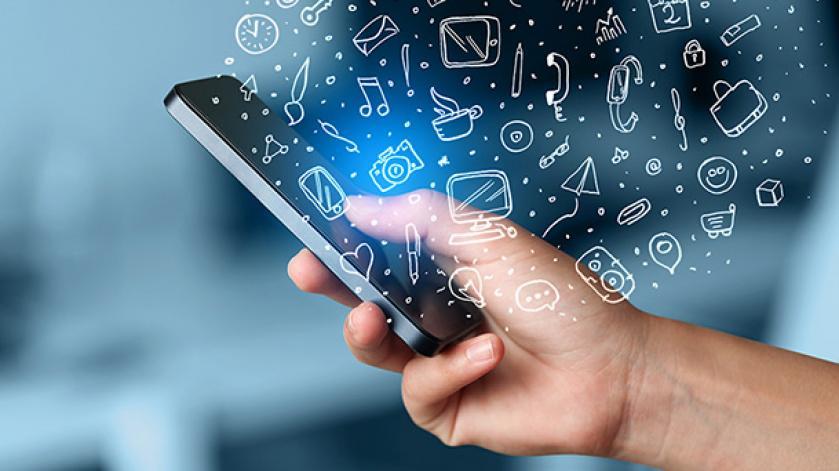 Ce sectiuni are un smartphone?
